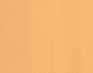 4116 Apricot